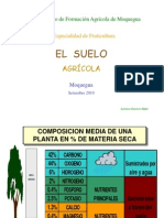 EL SUELOTerminadoOct 2011