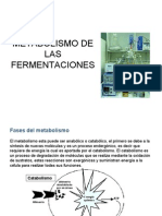 TEMA 15.Metabolismo de Las Fermentaciones