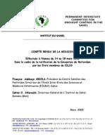 CSP mission Niamey conv rot final 1 .doc