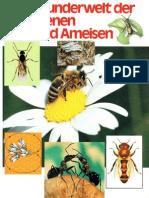 Was Ist Was - 019 - Bienen Und Ameisen