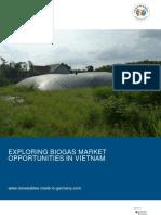 Giz2011 en Exploring Biogas Market Opportunities Vietnam