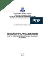 Dissertação - campos maduros dificuldades ambientais