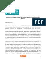 Paper CDH - Derecho a la Salud Sexual y Reproductiva. Despenalización del Aborto