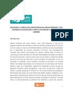 Paper ECOSOC - Desastres y Conflictos . Importancia Del Medio Ambiente y Del Desarrollo Sustentable Para La Seguridad y El Bienestar Humano