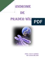 Sindrome Prader Willi