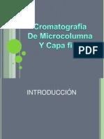 presentacion analisis cromatrografia