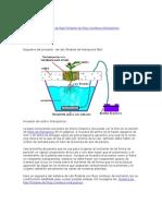 Sistema de Raíz Flotante de Flujo Continuo Hidropónico