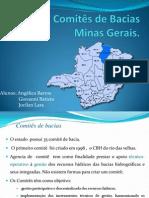 Comitês de Bacias  Minas Gerais