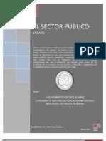 Enciso Ensayo Sector Publico