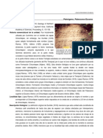 Chicontepec, Formación, Paleógeno, Paleoceno-Eoceno