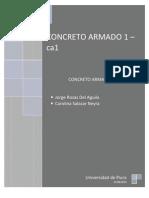 Descripcion General Del Proyecto CA1