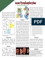 ADP-Glucose Pyrophosphorylase