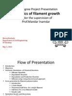 Dynamics of filament Growth