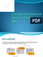 Enterprise Bussiness Intelligence Strategy EBIS