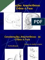 Considerações Arquitetônicas  do Crânio e Face.ppt