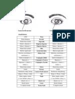 Status Oftamologi