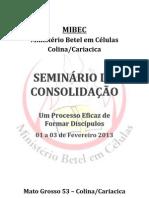Seminário de Consolidação Fev 2013