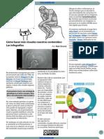 Articulo Nati Infografia