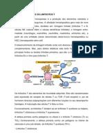 Linfocitos t 2