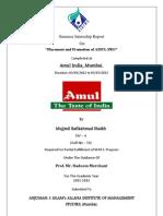 AMUL_Pro Final