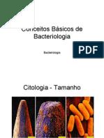 Morfologia bacte