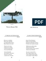 Francisco Grangeiro Filho - Folha Usada