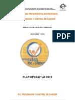 Modelo de Plan de Trabajo 2013 (3)
