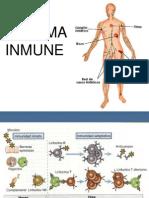 Sistema Inmune 2013