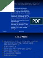Paralisis Del Plexo Cervical, Braquial, Del