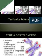 Teoria dos Telômeros