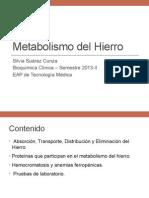 Metabolismo Del Hierro 2013