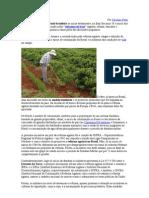 Reforma agrária brasileira