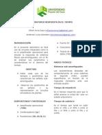 Informe (Rt)