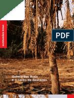 Guimarães Rosa e o canto da desrazão