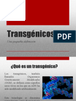 Transgénicos expo