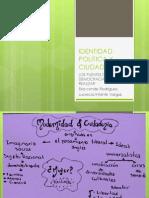Identidad Politica y Ciudadania1