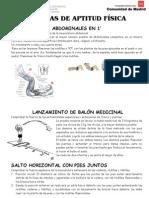 PRUEBAS DE APTITUD FÍSICA