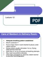 NEWBORN12 Student Version