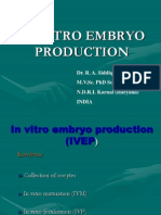 invitro embryo production