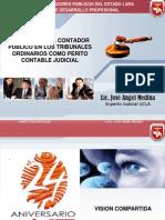 Experticias Idp