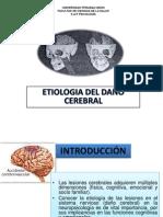 ETIOLOGIA DE DAÑO CEREBRAL   2
