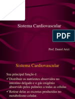 4034856 Biologia PPT Sistema Cardiovascular