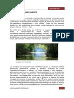 Naturaleza y Medio Ambiente - Copia