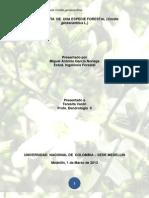 Monografia de Una Especie Forestal