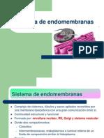 sistemadeendomembranas-121210132745-phpapp01