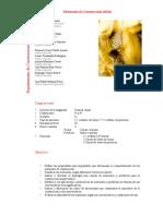 U0503082.pdf