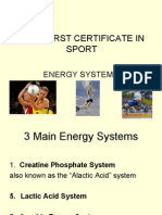 Btec First Certificate in Sport Energy Systems 3 Main