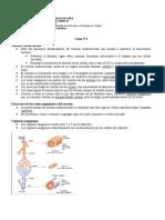 Clase 4 Sistema Cardiovascular (1)