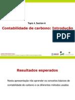 contabilidade de carbono