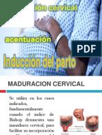 maduracion,induccion